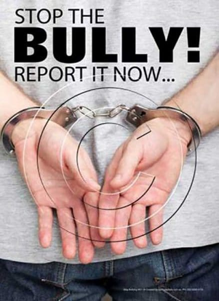 Bullying Safety Poster