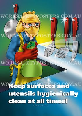 Food Preparation Work Health and Safety Posters