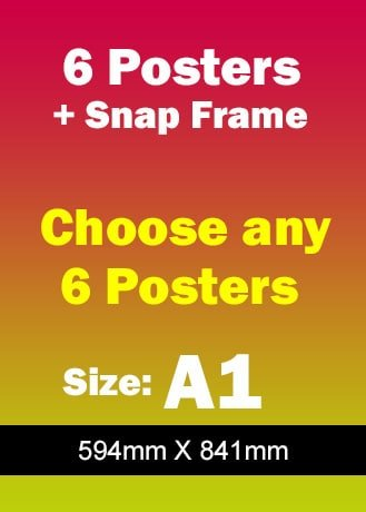 Snap Frame plus 6 Safety Posters A1 - Safety Posters Australia